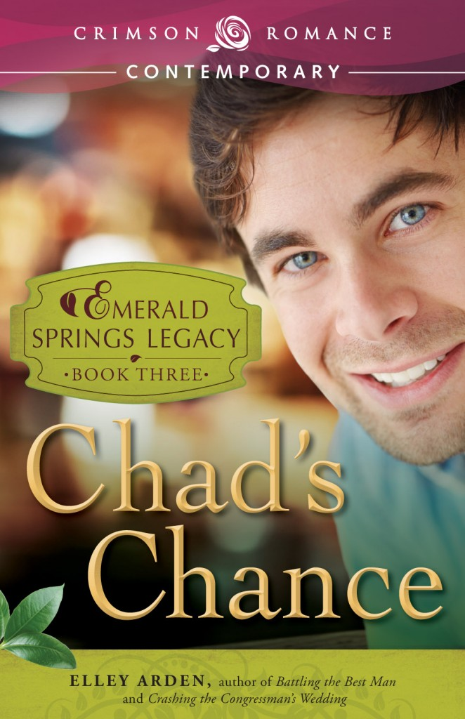 Chad's Chance by Elley Arden