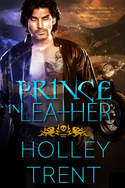 Prince in Leather light fantasy romance