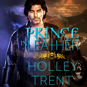 Prince in Leather audiobook cover