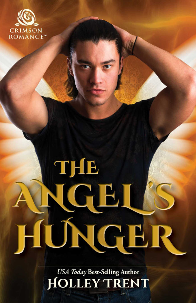 The Angel's Hunger paranormal romance