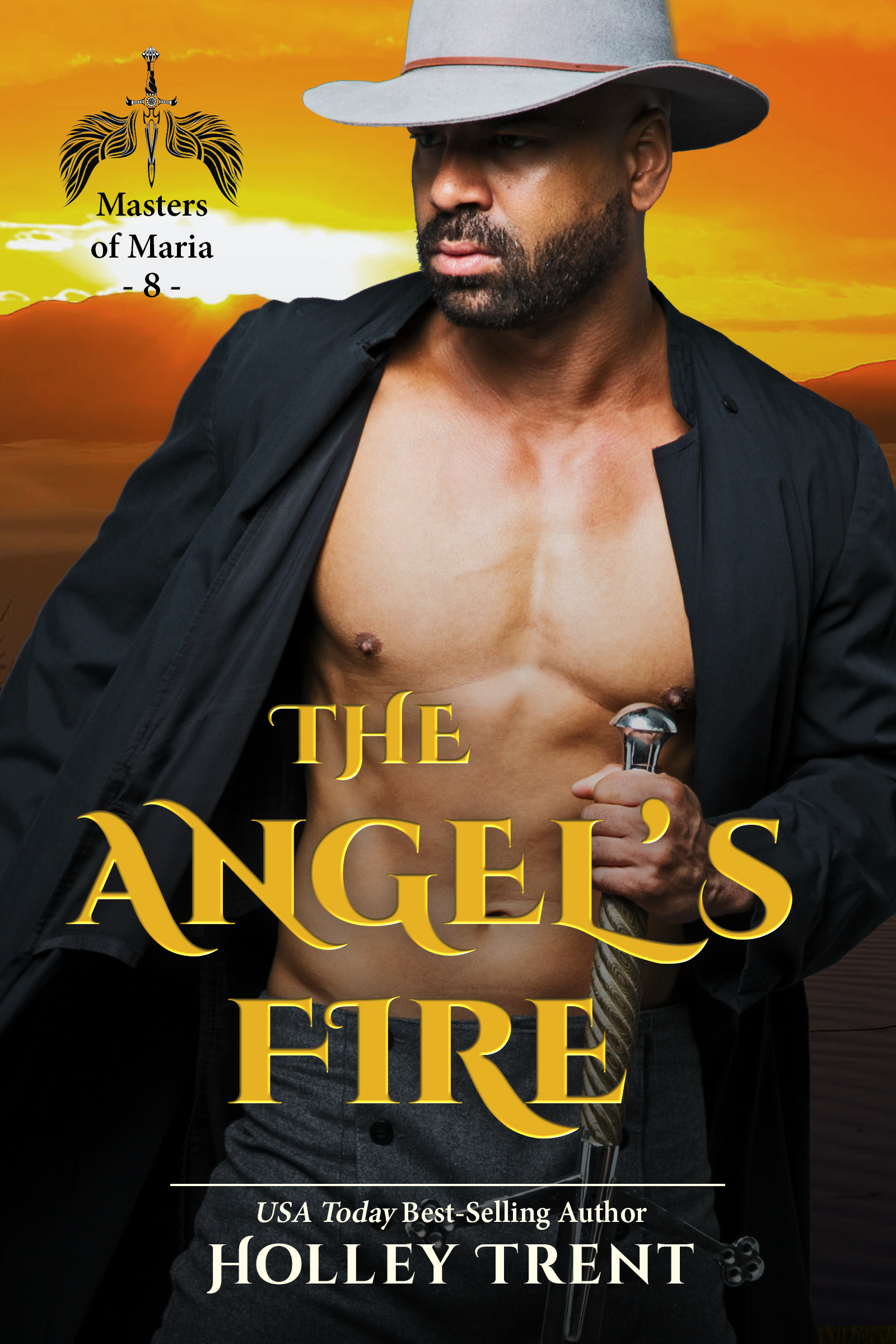 Cover image of The Angel's Fire
